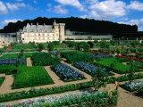 Gardens of Chateau Villandry, France Fotografisk tryk af John Elk III