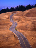 Winding Road at Mount Tamalpais, California, USA Photographic Print by Thomas Winz