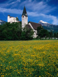 Field of Flowers in Front of Burg (Castle) Gutenburg and Church, Balzers, Liechtenstein Photographic Print by Martin Moos