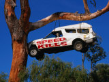 Car Hanging on Tree, Safety Message on Old Coast Road in South-West, Australia Photographie par Wayne Walton