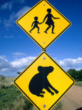 Children Crossing and Koala Crossing Signs on Dirt Road, Wonthaggi, Australia Photographic Print by Richard Nebesky