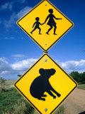 Children Crossing and Koala Crossing Signs on Dirt Road, Wonthaggi, Australia Photographic Print by Richard Nebesky
