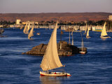 Feluccas on Nile River, Aswan, Egypt Photographic Print by Wayne Walton