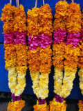 Floral Garland, Tamil Nadu, India Photographic Print by Greg Elms