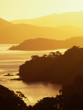 Paterson Inlet at Sunset, New Zealand Photographic Print by David Wall