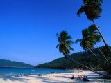 Palm Trees on Long Beach, Pulau Perhentian Kecil, Malaysia Photographic Print by Anders Blomqvist