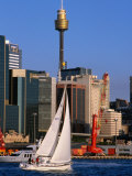 Sailing Around Darling Harbour, Sydney, Australia Fotografisk tryk af Greg Elms