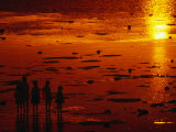 Children Silhouetted at Sunset, Ko Samui, Surat Thani, Thailand Photographic Print by Dallas Stribley