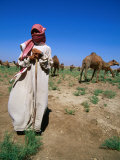 Young Man Herding Camels, Iraq Photographic Print by Jane Sweeney