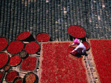 Zhuang Girl Drying Red Peppers on the Roof of Her House, Long Ji, China Photographie par Keren Su