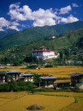 Farm Fields and Buildings, Thimphu, Bhutan Photographic Print by Izzet Keribar