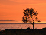Sunset Over Skalderviken and Kullaberg, Skane, Sweden Photographic Print by Anders Blomqvist