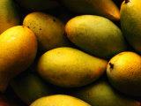 Nam Doc Mai Mangoes for Sale at Rapid Creek Market, Darwin, Australia Fotografie-Druck von Will Salter