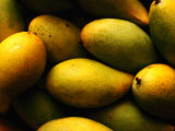 Nam Doc Mai Mangoes for Sale at Rapid Creek Market, Darwin, Australia Photographic Print by Will Salter
