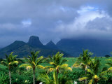 Palm Trees and Mountain Peaks in Distance, Mauritius Photographic Print by John Hay