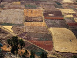 Fields in Urubamba Valley, Urubamba, Cuzco, Peru Photographic Print by Shannon Nace