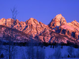Grand Teton National Park in Winter Time, Grand Teton National Park, Wyoming, USA Photographic Print by Carol Polich