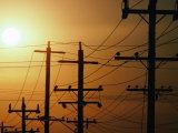 Power Lines at Dusk, Australia Fotografie-Druck von Peter Hendrie