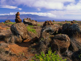 The Garden of the Gods, Lanai, Hawaii, USA Photographic Print by Ann Cecil