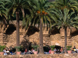 Outdoor Cafe Beneath Palm Trees in Parc Guell, Barcelona, Spain Photographic Print by Anders Blomqvist