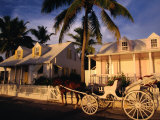 A Horse-Drawn Carriage Stands in Front of a Loyalist's Home, Eleuthera Point, Bahamas Photographic Print by Greg Johnston