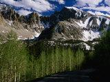 Wheeler Peak and Trees, Great Basin National Park, Nevada, USA Fotoprint van Stephen Saks