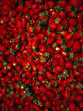 Strawberries on Display, Paris, France Photographic Print by Setchfield Neil