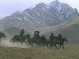 Semi-Nomadic Tajiks of the Pamir Mountains Herding Sheep with Horses, Near Kashgar, Kashgar, China Photographic Print by Keren Su