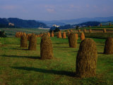 Bales of Hay in Pieniny Mountains Region, Malopolskie, Poland Photographic Print by Krzysztof Dydynski