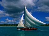 Typical Fishing Sailboat, Bayahibe, La Romana, Dominican Republic Photographic Print by Greg Johnston
