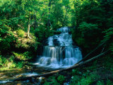 Wagner Falls and Surrounding Vegetation, Munising, USA Photographic Print by Charles Cook