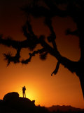 Hiker in Silhouette in the Joshua Tree National Park, California, USA Photographic Print by Cheyenne Rouse