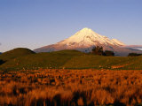 Snow-Capped Mt. Taranaki from Across Plain, Taranaki, North Island, New Zealand Fotografisk trykk av Oliver Strewe