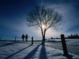 Couple Hiking on a Path with Winter Sun, Zurich, Switzerland Photographic Print by Martin Moos