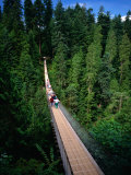 Capilano Suspension Bridge Crossing the Capilano River, Vancouver, British Columbia, Canada Photographic Print by Thomas Winz