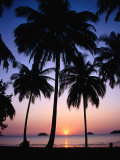 Palm Tree-Lined Hat Kaibae at Sunset, Thailand Photographic Print by Pershouse Craig