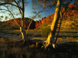 Glen Helen Gorge, West Macdonnell National Park, Australia Photographic Print by Richard I&#39;Anson