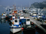 Fishing Boats in the Harbour, Concarneau, Brittany, France Photographic Print by Martin Moos