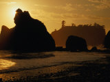 Ruby Beach at Sunset, Olympic National Park, USA Photographic Print by Nicholas Pavloff
