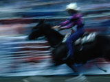 Rider in Rodeo at the Calgary Stampede, Calgary, Canada Photographic Print by Rick Rudnicki