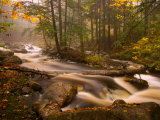 Flowing Streams Along the Appalachian Trail, East Arlington, Vermont, USA Photographic Print by Joe Restuccia III