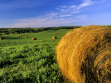 Hay Bales near Bottineau, North Dakota, USA Photographic Print by Chuck Haney