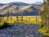 Salmon River near Stanley, Idaho, USA Photographic Print by Chuck Haney