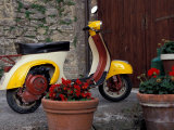 Scooter, Preggio, Umbria, Italy Photographic Print by Inger Hogstrom