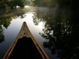 Canoeing Alexander Springs Creek, Ocala National Forest, Florida Photographic Print by Maresa Pryor