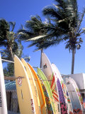Surfboards, Grand Cul De Sac, St Bart's Photographic Print by Bill Bachmann