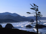 Cannon Beach from Ecola State Park, Oregon, USA Photographic Print by Janell Davidson
