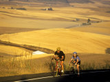 Road Cyclists Biking Through Wheat Harvest, near Pullman, Washington, USA Photographic Print by Chuck Haney