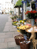 Flowers For Sale, Munich, Germany Photographic Print by Adam Jones
