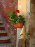 Private Staircase with Flowerpot, Malcesine, Italy Photographic Print by Lisa S. Engelbrecht